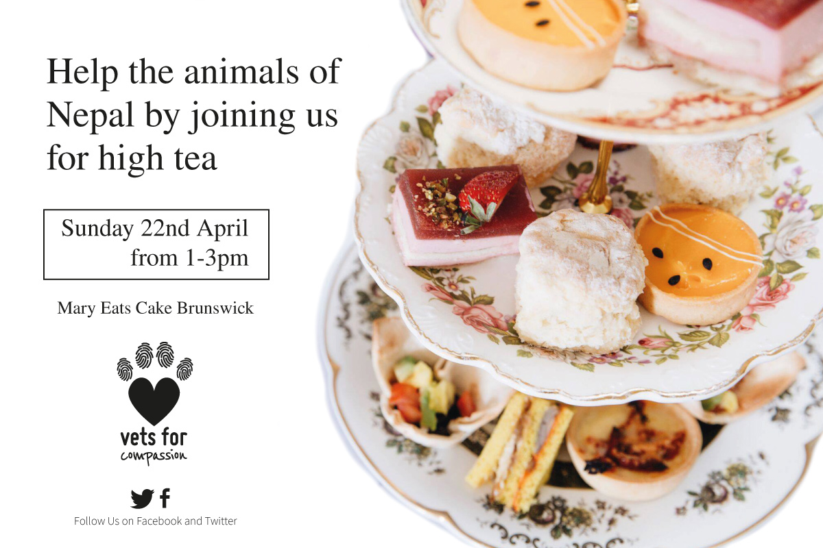 High Tea to help the animals of Nepal